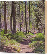 Twisp River Trail Wood Print