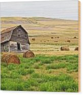 Twisted Barn On Canadian Prairie, Big Wood Print