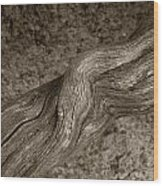Twisted Root Wood Print