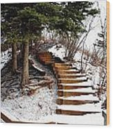 Twisted Staircase Wood Print