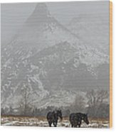 Two Black Horses In The Snow   #7983 Wood Print
