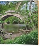 Two Bridges Wood Print