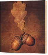 Two Brown Acorns Wood Print