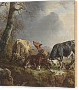 Two Bulls Defend Against A Cow Attacked By Wolves Wood Print by Jacques Raymond Brascassat