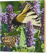 Two Butterflies In The Afternoon Sun Wood Print