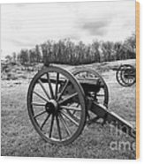 Two Cannons Wood Print
