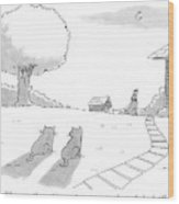 Two Cats Sit On The Front Yard Remarking At A Dog Wood Print