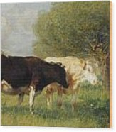 Two Cows In A Meadow Wood Print