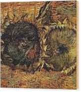 Two Cutted Sunflowers Wood Print