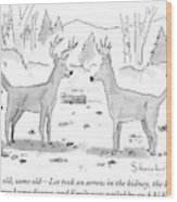 Two Deer In A Forest Are Seen In Conversation Wood Print by Danny Shanahan