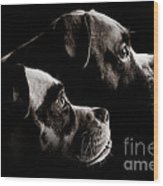 Two Dogs Wood Print