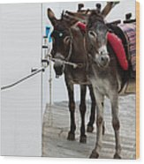 Two Donkeys Tethered In The Street In Wood Print