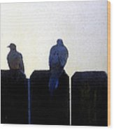 Two Doves On A Fence Wood Print