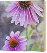 Two Echinacea Wood Print