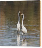 Two Egrets In The Pond Wood Print