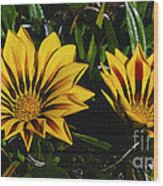 Two Flowers Wood Print
