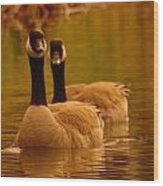 Two Geese In A Line Wood Print