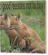 Two Good Reasons Not To Buy Fur Wood Print