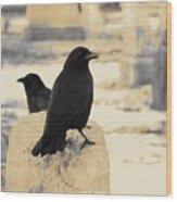 Two Graveyard Blackbirds Wood Print