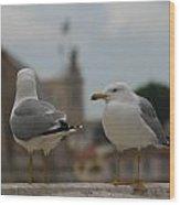 Two Gulls Wood Print