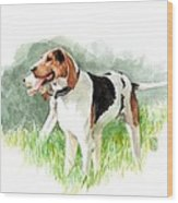 Two Hounds Wood Print
