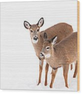 Two In The Snow Wood Print