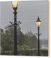 Two Lamps Wood Print