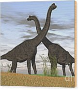 Two Large Brachiosaurus In Prehistoric Wood Print by Kostyantyn Ivanyshen