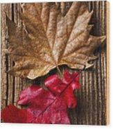 Two Leafs  Wood Print