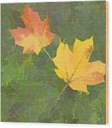 Two Leafs In Autumn Wood Print