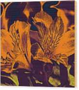 Two Lilies Gradient Ink Outline Wood Print