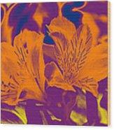 Two Lilies Gradient Wood Print