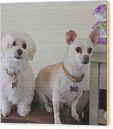 Two Little Dog Wood Print