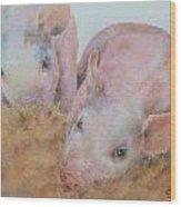 Two Little Piggies Wood Print