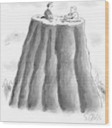 Two Men On Top Of The Plateau Of A Large Mountain Wood Print
