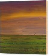 Two Mile Landing Colorful Sky Wood Print