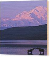 Two Moose Kiss In Wonder Lake Wood Print