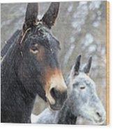 Two Mules For Sister Sara Wood Print