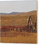 Two Old Barns Near Thorp  Wa Wood Print