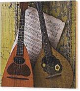 Two Old Mandolins Wood Print
