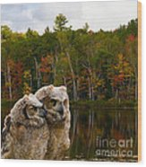 Two Owlets At A Lakeshore Wood Print