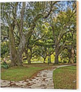 Two Paths Diverged In A Live Oak Wood...  Wood Print