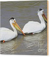 Two Pelicans Wood Print