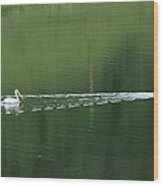 Two Pelicans On Lake Wood Print