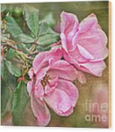Two Pink Roses I  Blank Greeting Card Wood Print