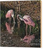 Two Pink Spoonbills Wood Print