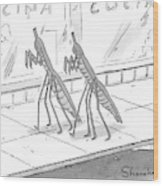 Two Praying Mantises Walk Together On The Street Wood Print