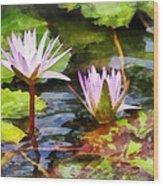 Two Purple Water Lotus Wood Print