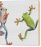 Two Red Eyed Tree Frogs Wood Print