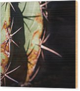 Two Shades Of Cactus Wood Print